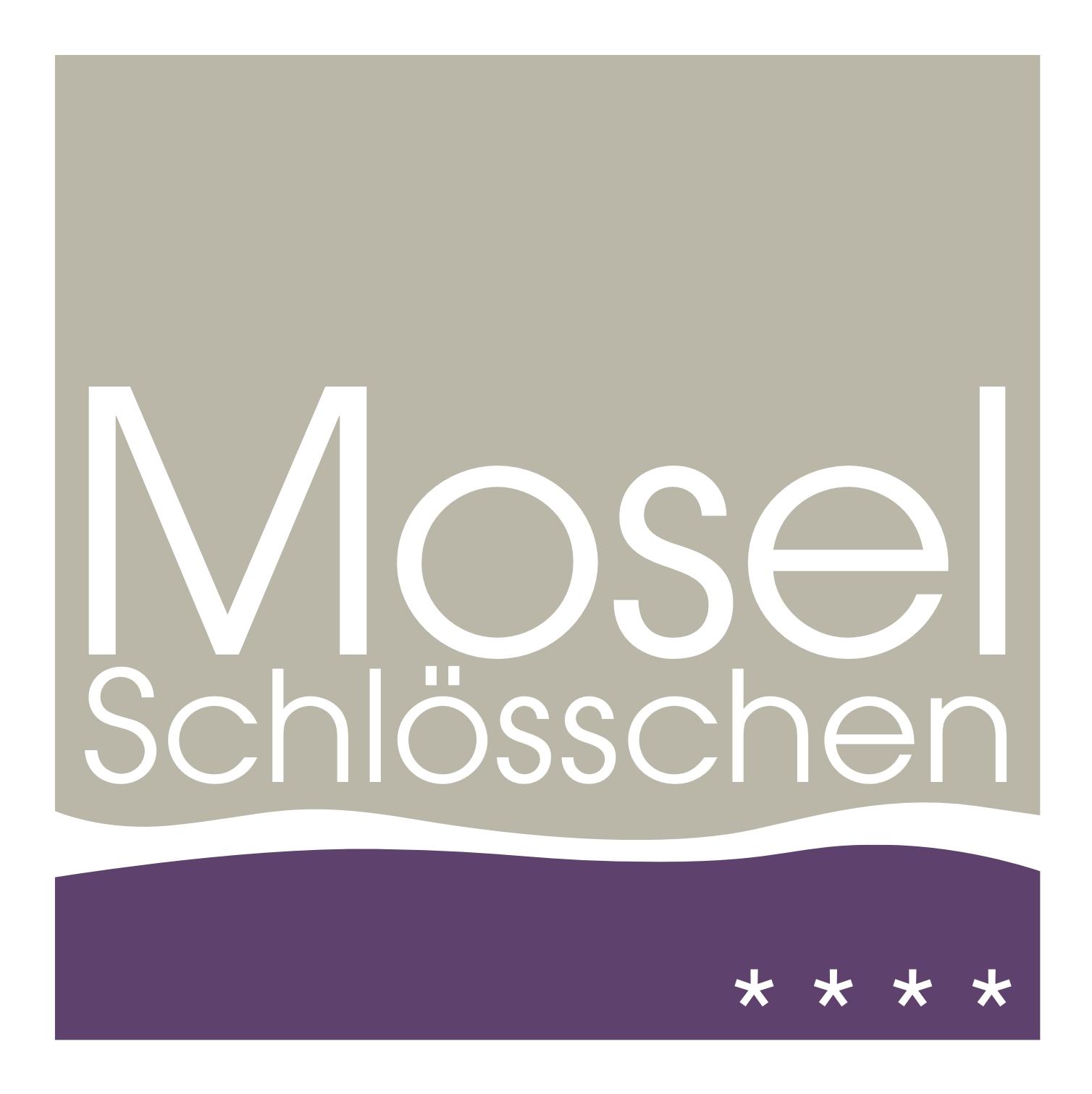 logo_ms
